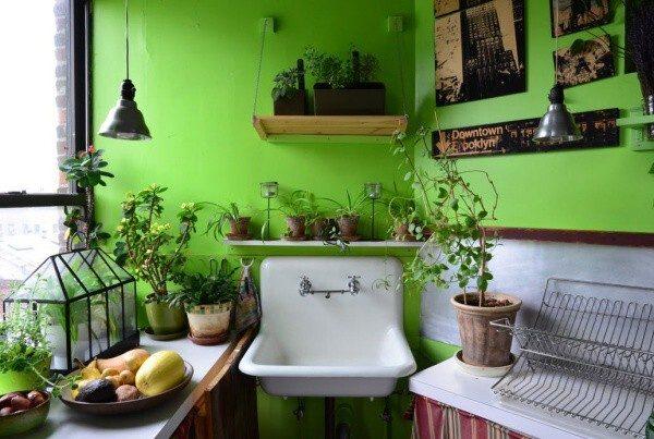 Đưa thiên nhiên vào phòng bếp