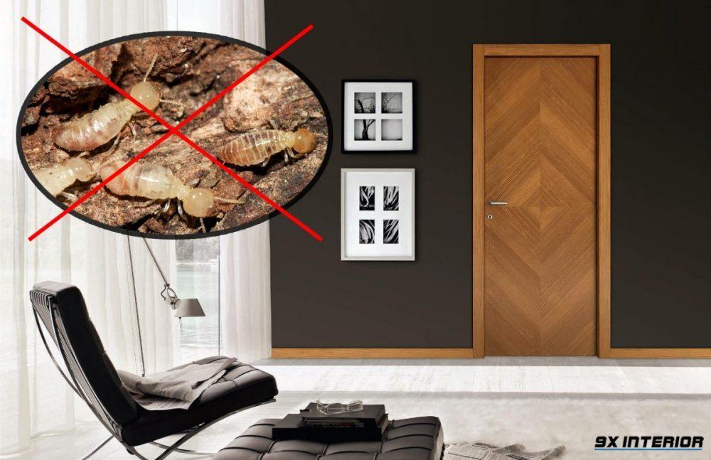 Cửa gỗ công nghiệp có khả năng chống mối mọt, ẩm mốc và hạn chế tiếng ồn